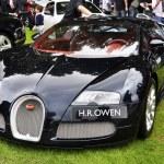 Постер, плакат: A Bugatti Veyron EB 16 4