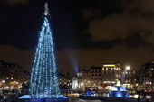 Christmas tree on Trafalgar Square, London — Stok fotoğraf