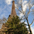 The Eiffel Tower in Paris — Stock Photo #21299063
