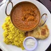 Pollo al curry — Foto Stock