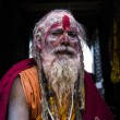 Sadhu during Shivaratri festival in Kathmandu, Nepal — Stock Photo #23041808