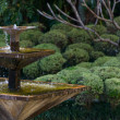 Stock Photo: Fountain in an Asian garden