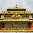 Shechen monastery in Kathmandu — Stock Photo