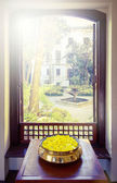 Yellow flowers and open window — Stock Photo