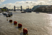 The river Thames in London — Stock Photo