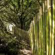 Wooden fence — Stock Photo #38192265