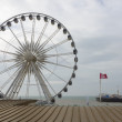 The Brighton Wheel — Stock Photo