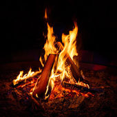 Camp fire — Stockfoto