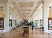 英国的博物馆 — 图库照片