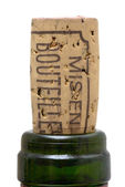 Bottle of wine cork — Stock Photo