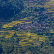 Stock Photo: Nepalese village