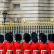 Royal guards at Buckingham Palace — Stock Photo #40105149