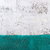 Green and white wall texture — Stock Photo