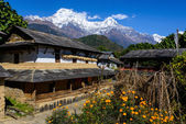 Ghandruk village in the Annapurna region — Stock Photo