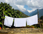 Sheets drying in the sun — Stock Photo