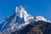 The Machapuchre in the Annapurna region — Stock Photo