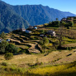 Stock Photo: Nepalese village in Annapurnregion