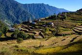Nepalese village in the Annapurna region — Stock Photo