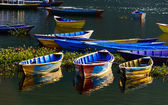 Colorful barques in Pokhara, Nepal — Stock Photo