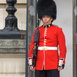 Stock Photo: Royal guard at Buckingham Palace
