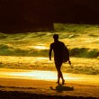 Stock Photo: Surfer walking on beach