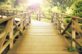 Wooden footbridge in a wood — Stock Photo