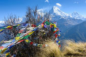 The Annapurna South in Nepal — Stockfoto