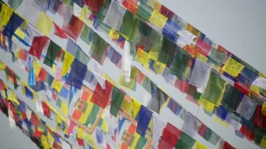 Prayer flags in the wind — Stock Video