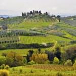 Tuscany landscape — Stock Photo #6321191
