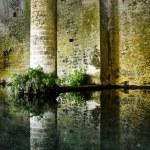 San Gimignano medieval fountain — Stock Photo #6777414