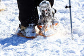 Racket of snow, Snowshoe — Stock Photo