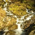 Magical waterfall — Stock Photo #39474789