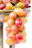Fresh ripe grapes — Stock fotografie