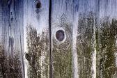 Staré dřevěné desky pokryté zeleným mechem na rustikální pozadí — Stock fotografie