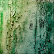 Stock Photo: Old wooden planks painted with green paint rustic background