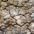 Stock Photo: Background of dry cracked soil surface.