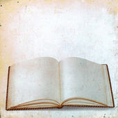 Blank sheets of old books for records on vintage background — Stock Photo