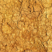 Seamless texture - clay soil in the context of — Foto Stock