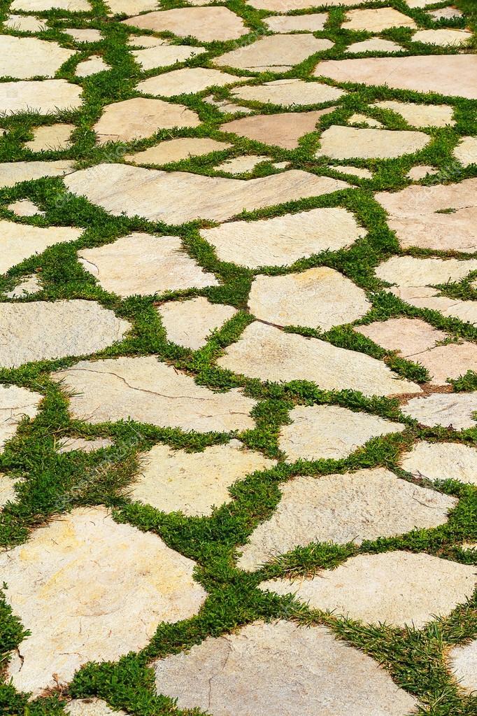 pedra jardim caminho:- Caminho de pedra de jardim com grama crescendo entre as pedras