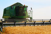 Harvester for harvesting wheat, Ukraine — Stock Photo