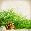 Vintage background of pine branches hanging bump on a brown back — Stock Photo