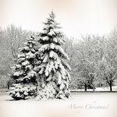 Mutlu noeller, ağaçlar ve noel ağaçları sn içinde retro kartı — Stok fotoğraf