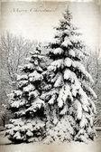 Retro kartu s veselé vánoce, stromy a jedle pokryté — Stock fotografie