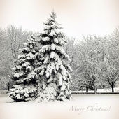 Retro card with Merry Christmas, trees and Christmas trees in sn — Stockfoto