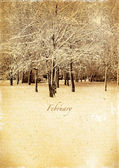 Calendar retro. February. Vintage winter landscape. — Stock Photo