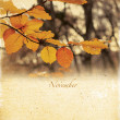 Calendar retro. November. Vintage autumn landscape. — Stock Photo #31636183