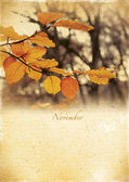 Calendar retro. November. Vintage autumn landscape. — Stock Photo