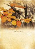 Calendar retro. November. Vintage autumn landscape. — Stock Photo