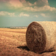 Stock Photo: Haystack assembled on field. Toning.