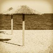 Deserted winter beach on the coast. — Foto de Stock